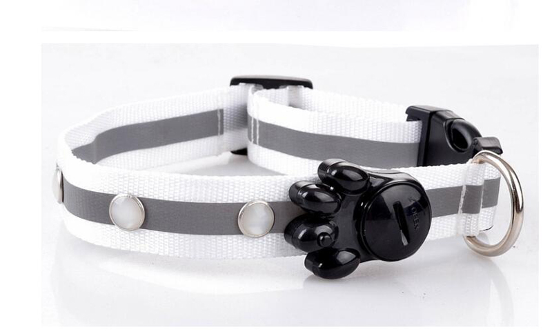 dog collar for small dogs (6)