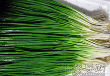 Four Seasons scallions,chive - 500 seeds vegetable seeds for home plant  free shippng