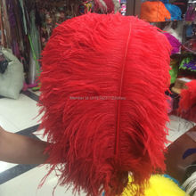New 10 PCS beautiful natural red ostrich feathers wholesale 60 to 65 cm / 24 to 26 inches decorative feather(China)