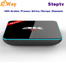 With 1 Year Ip Tv Account European Arabic Spain Turkish UK Dutch Italy IPTV Code APK Q Plus Android Tv Box HD IPTV Set Top Box(China)