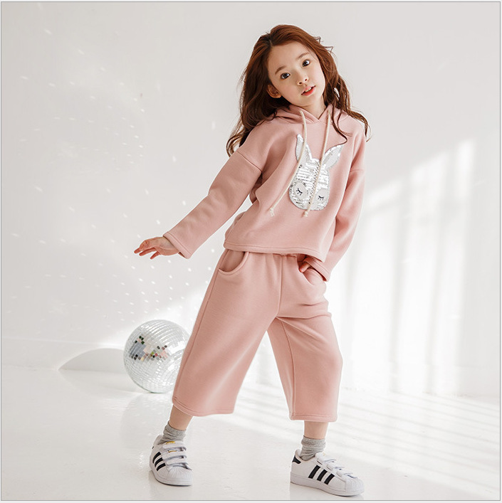 Girls South Koreas New Spring Hoodie + Wide Leg Pants Suit 2 Pieces Kids Clothing Sets Pink<br>