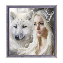 Diamond Painting Wolf fairy Diamond Rhinestone Painting DIY 5D Schilderen Canvas For Embroidery Russian Cross Stitch Picture(China)