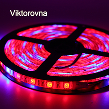 Viktorovna SMD 5050 Led Plant Grow Light Red Blue 4:1 Waterproof 12V 60led/m 1/2/4/5M lamp for Aquarium Greenhouse Plant Growing