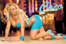 Custom Coco Nicole Austin Poster Sexy Girl Sticker Wallpaper Naked Pron Star Coco Austin Wall Stickers Kids Home Decor #PN#2472#(China)