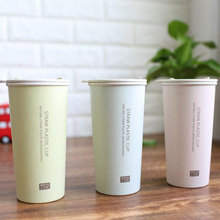 2017 New Fashion Nature Straw Fiber Plastic Mug With Lid  Eco-Friendly Water Bottle Simple Double Layer Moring Mug