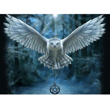 100% DIY 5D Diamond Painting Cross Stitch Bald Eagle Diamond Mosaic Patterns handmade Kits Diamond Embroidery Rhinestone Owl(China)