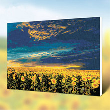 40x50cm With frame landscape sunflower coloring by numbers  DIY digital oil painting,living room decorative painting PD0004