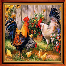 Diamond Mosaic Sale Cross-Stitch Kits Diamond Embroidery Pretty Big Cock  Pictures By Numbers Embroidery Ribbons Needlework