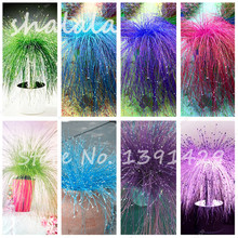 200 pcs Multi Color Garden Ornamental Grass Seeds Beautiful Grass Seeds, Bonsai Seeds, Natural Growth,The Germination Rate 95%