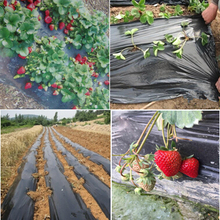 Black agricultural film strawberry PE film garden flower greenhouse plastic garden mulch film 0.014 mm thickness(China)