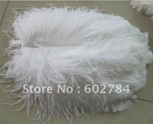 EMS Free Shipping 50pcs/lot 16-18 inches 40-45cm white ostrich drab feather ostrich plume