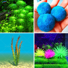 Promotion!!! 500 seeds mixed aquarium fish tank grass seeds water Aquatic plant seed Free shipping.Aquarium planting seeds, fish(China)