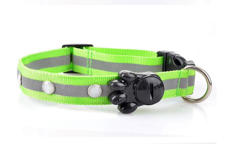 dog collar for small dogs (3)