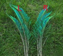 Freeshipping!100pcs/Lot SWORD PEACOCK FERN FEATHERS 12-14 Inches 30-35cm Left or Right side