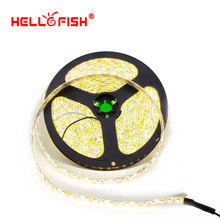 Hello Fish 5m  IP65 Waterproof  600 LED Tape 2835 SMD 12V Flexible LED Strip Light, White/Warm White