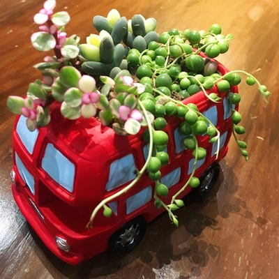 Zakka Creative Flowerpot Retro Cars Colorful Planter Resin Garden Succulent Plants Bonsai Flower Pot Decoration indoor macetas (8)