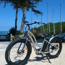 Hot Sales Electric Bike Muse electric Bicycle With Lithium Battery 48V 13Ah Fat tire electric e bike for lady