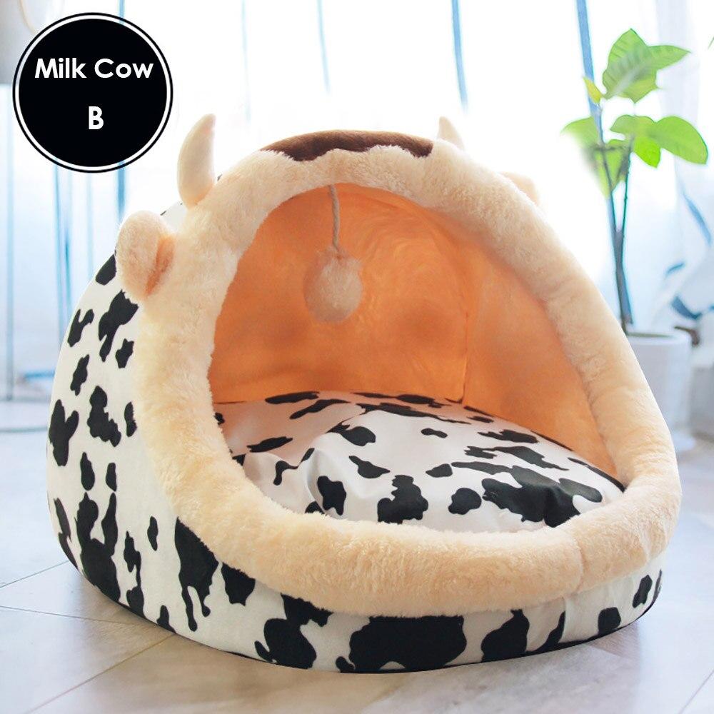 Milk Cow B
