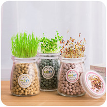 Creative office mini plant negative ion planting generation of heart grass seed Home Office Decor