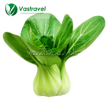 500 Seeds ShangHaiQing Bok Choy Seeds Easy and Fast to Grow Popular Container Garden Balcony NON-GMO DIY Home Garden Vegetable(China)