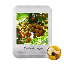 Easy grow Professional Packaging 2Pcs Thailand Longan Seeds for Home & Garden, Extra-Sweet Extra-Big Bonsai Fruit Seeds, #LY001(China)