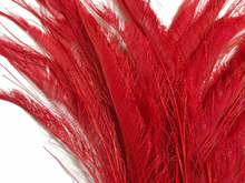 100pcs red peacock sword feather peacock feather for costumes design weddings crafts decor