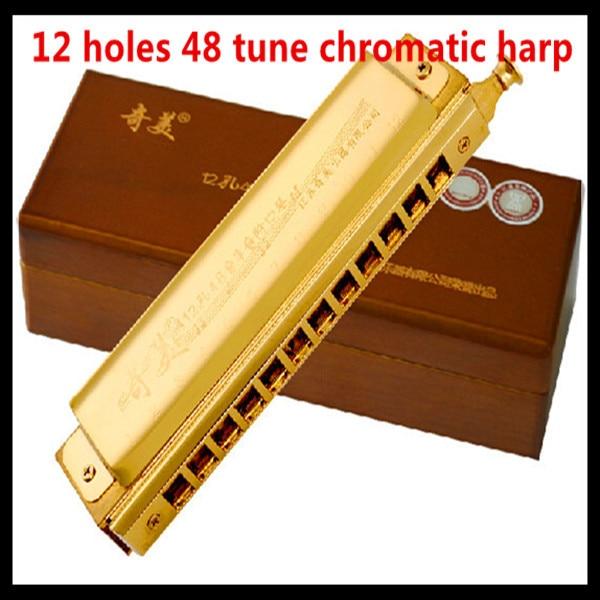 Chromatic Harmonica 12 Hole 48 Tune Harmonica Cromatica  Professional Mouth Ogan Harp Instrumentos Musicais Chromatic Harmonica<br><br>Aliexpress