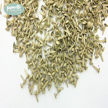 Happymems Round Brads Nail Arts 500 Pcs/lot 9x4mm Pastel Colors Scrapbooking Embellishment Scrapbooking Brads DIY Crafts Brads(China)