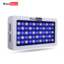 Newest 165W aquarium light Blue White LEDs Coral Reef Grow Light High Power Fish Tank Aquarium Light Lamp reef aquarium marine(China)