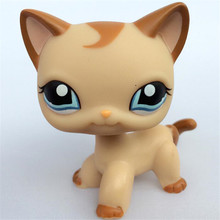 Pet Shop lps toys collections Short Hair Kitty Rare Old Styles White Pink Tabby Black pink kitten cute Animal Toys(China)