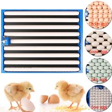 Bird Poultry Eggs Hatching Incubator Tray Incubation Tools Plastic Chicken Eggs Turner Automatic Duck Quail Tray Equipment(China)