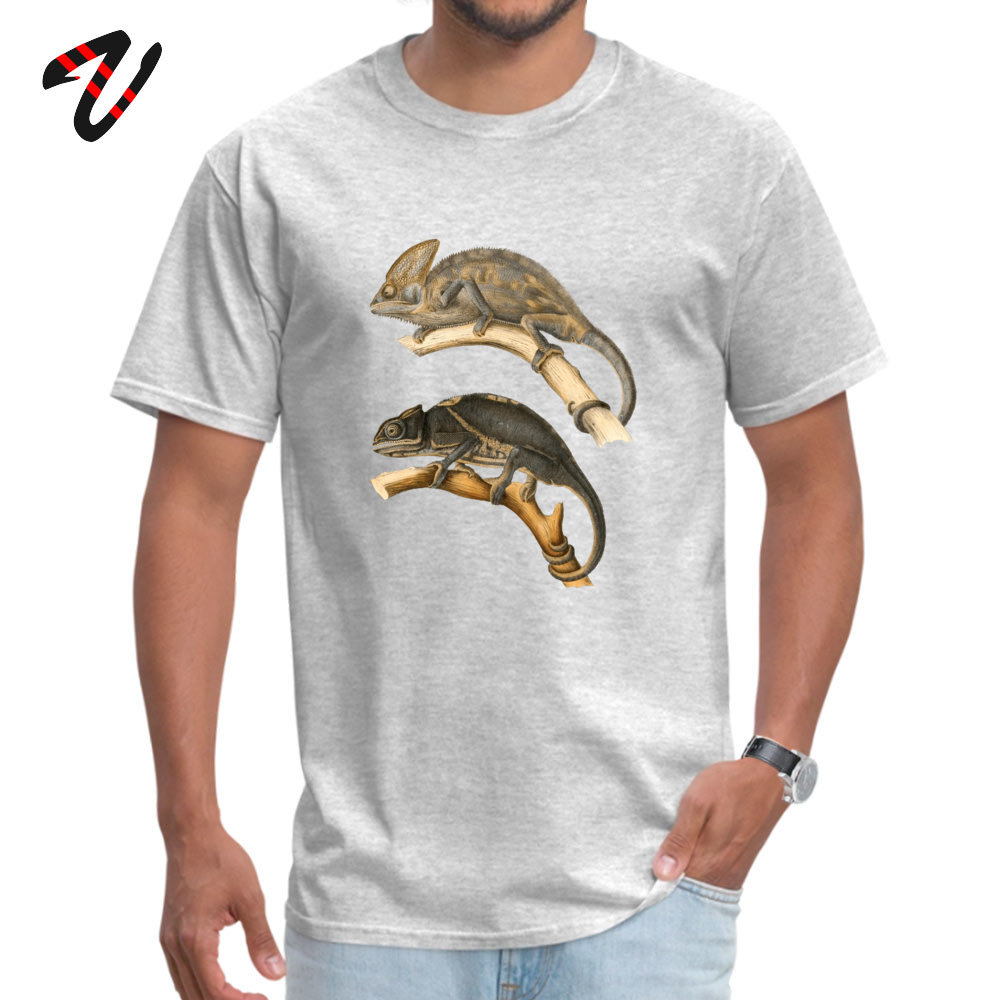 Chameleon Scientific Illustration Summer Cotton Round Neck Tops Tees Short Sleeve Funny Sweatshirts New Arrival Top T-shirts Chameleon Scientific Illustration 12047 grey