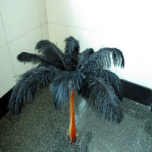 Wholesale!100pcs 25-30cm/10-12inch black ostrich plumes feather cheap feathers ostrich feather wedding table decoration(China)