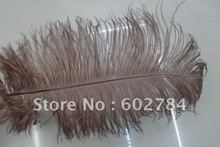 Wholesale 100pcs/lot 12-14 inches 30-35cm brown ostrich drab feather ostrich plumes Free Shipping