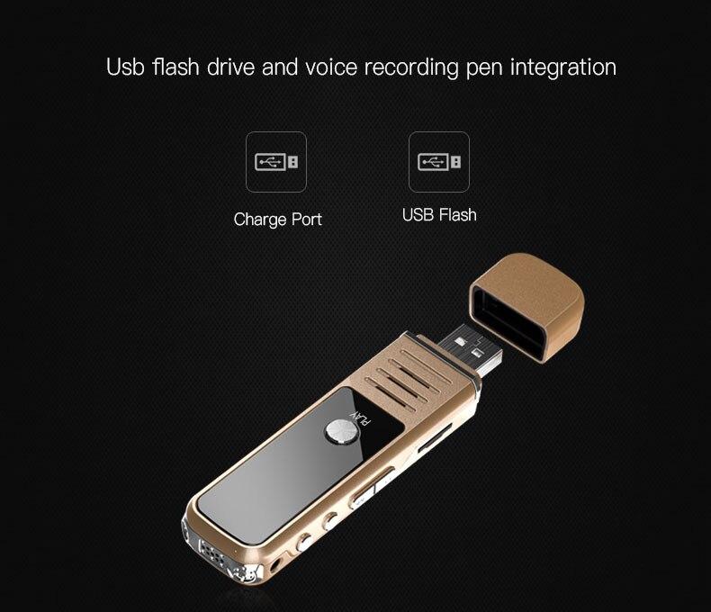 voice recorder toy