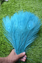 New! Free Shipping Sale 50 pcs / lot beautiful light blue peacock tail feathers 10-12 inches Wedding, Party, Home.