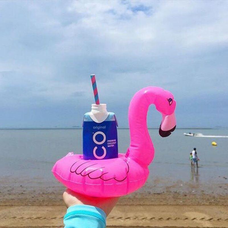 Mini Inflatable Flamingo (14)