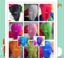 Beautiful ostrich feather 10 PCS feather length 10 - 12 inches / 25 - 30 cm of wedding to decorate a variety of color optional