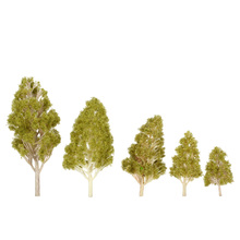 Trees Model 5Pcs/Set Plastic Architectural Model Railroad Layout Garden Landscape Scenery Diorama Miniatures Trees Model
