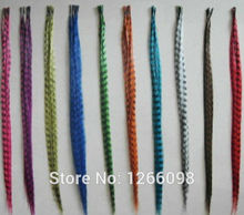 New arrival hair jewelry 12 clors available Colorful Grizzly Feather Hairwear Extensions with free beads and hook