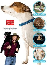 Don Sullivan   Perfect Dog Command Collar Reduce Pulling Jumping Pinch Training for Medium/ Large dogs Egg Tools