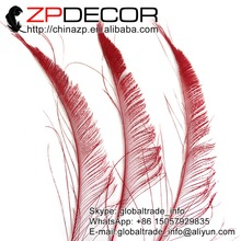 ZPDECOR 50pcs/lot 30-40cm(12-16inch) Hand Select Premium Red Bleached Peacock Sword Cut Feathers Costume and Carnival Decoration