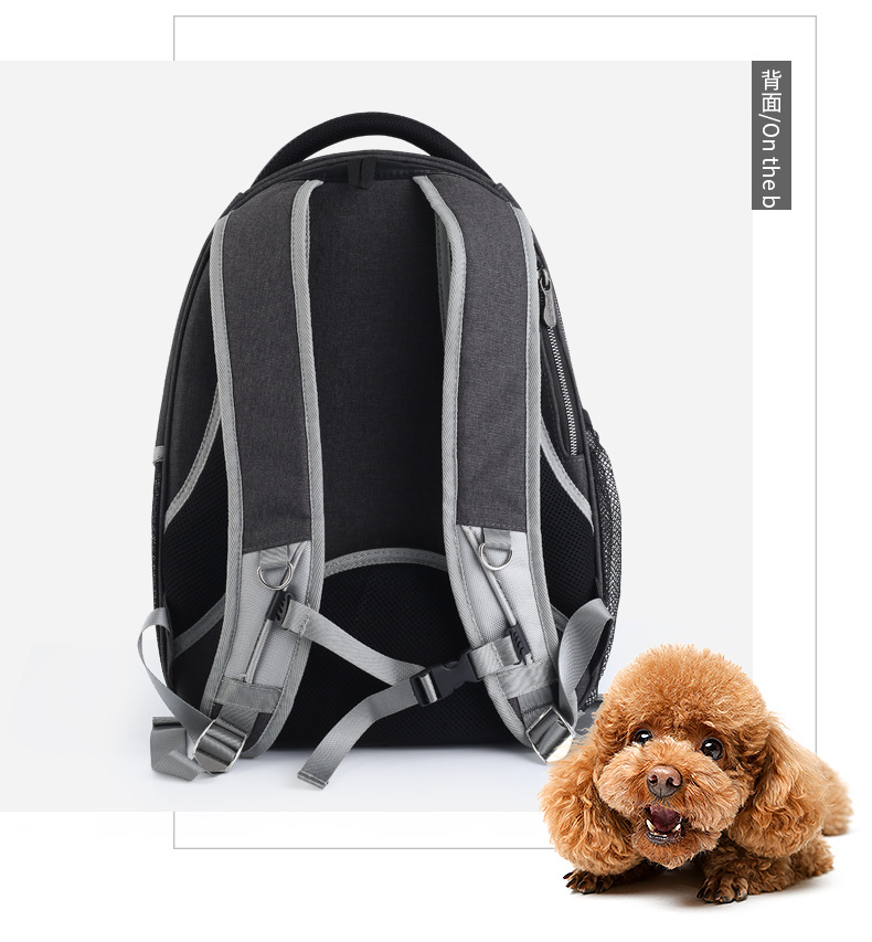 dog backpack carrier (6)