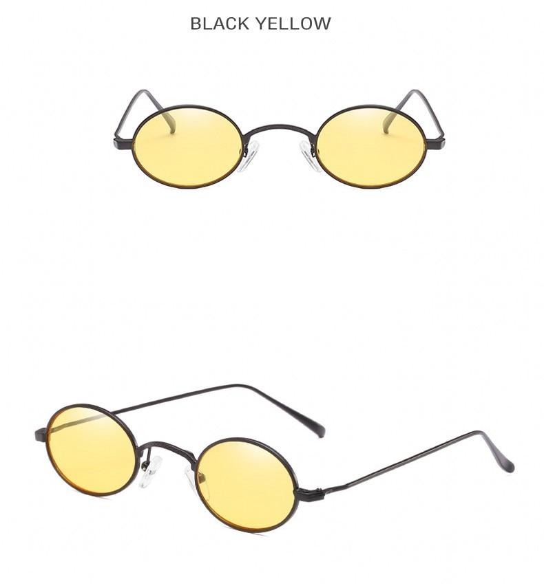 tinted sunglasses (1)