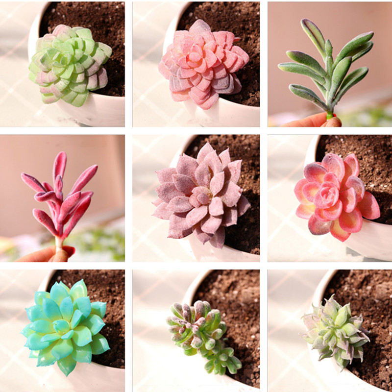 miniatures Home Simulation meat flocking plants Mini Succulents Plastic Artificial Plants Tree Garden Miniature Home Decor 5