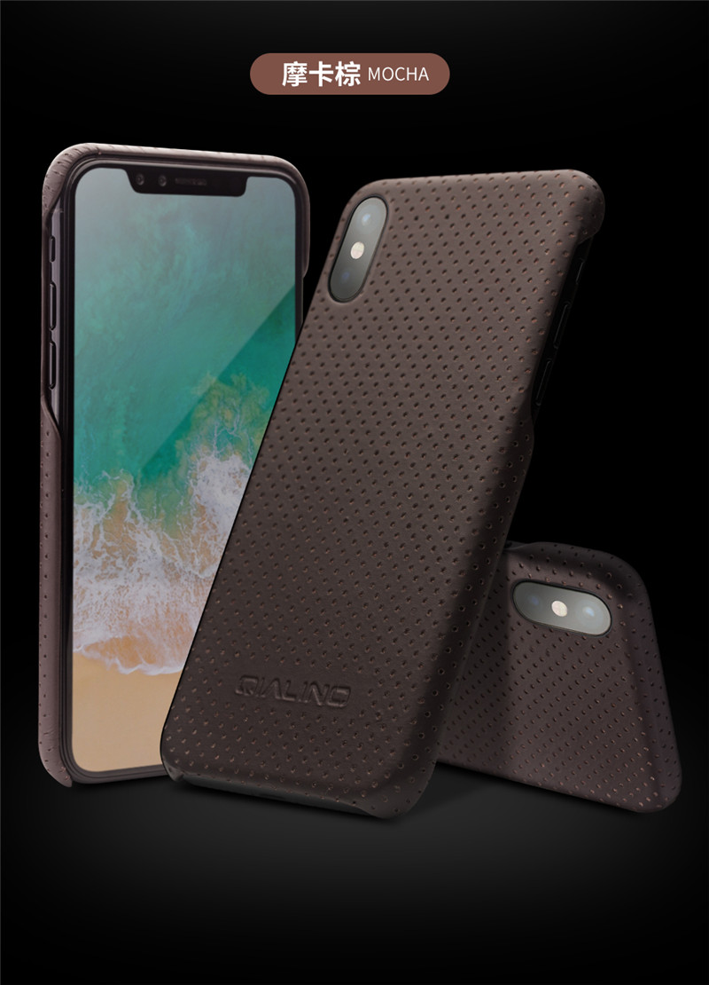for iPhone X case Luxury (16)