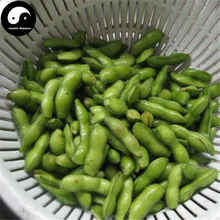 Buy Green Soybeans Vegetable Seeds 100pcs Plant Chinese Bean Glycinemax(China)