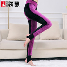 2017 Stockings Autumn And Winter New Motherwort Thickening, Knee Pad Function, Pants, High Density Nylon, Velvet, Warm Leggings(China)