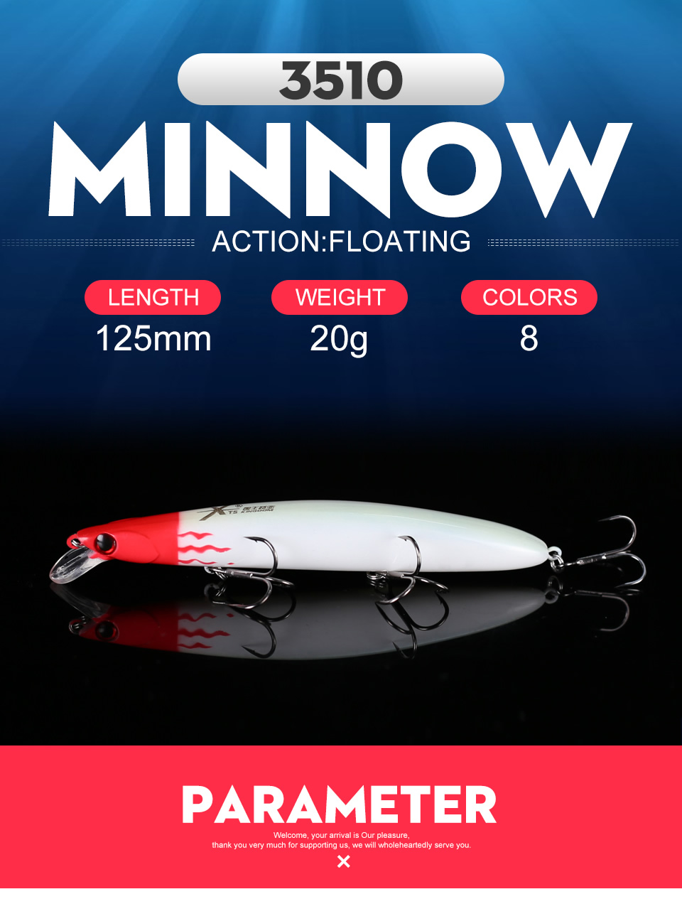 Kingdom 2019 Professional Floating JERKBAIT Fishing Lures 125mm 20g Wobblers Minnow Hard Baits Depth 0.2-0.4m Bass Pike Bait Lure (1)