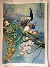 100% handpainted painting animal peacock flower landscape oil painting pure manual oil painting classical handmade oil painting(China)